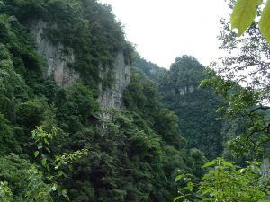 Emei Mountain – Birthplace of Jingui Golden Shield Qi Gong